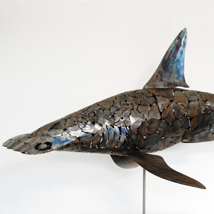 Requin Marteau flowers - Hammer Head Shark
