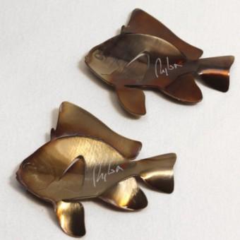 Baliste flower - Trigger fish