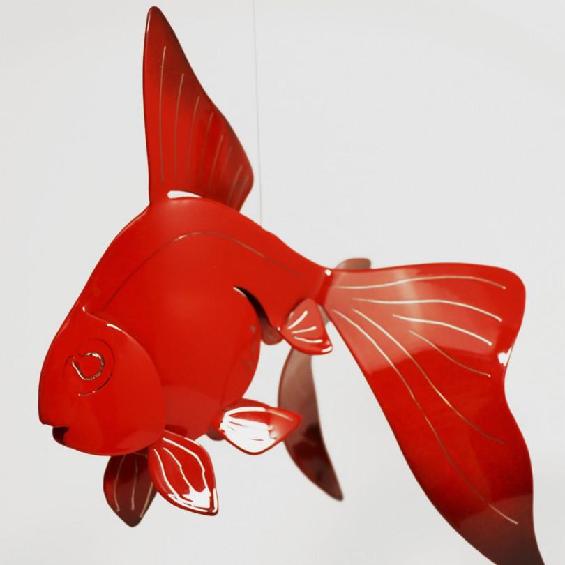 Gold Fish M - couple