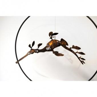 Hippocampe Feuille Singnathe
