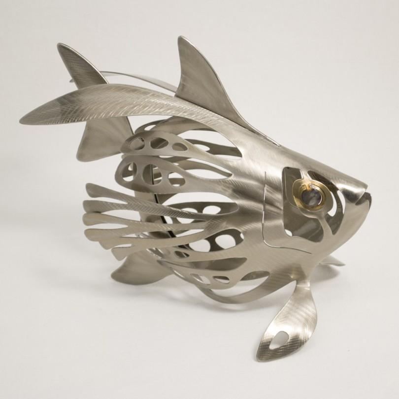 Poisson Poule Fish
