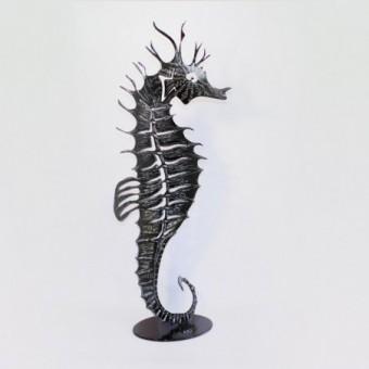 Hippocampe   Squeleton