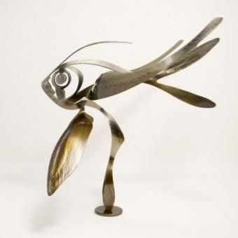 Apogon 4 ailes - L
